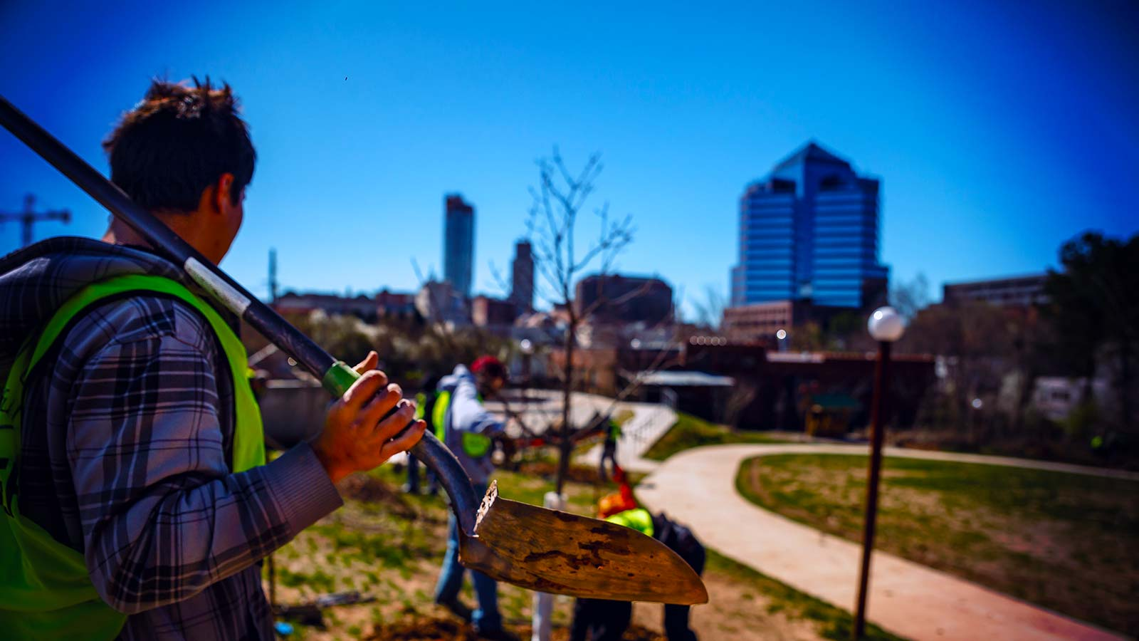 The Joy of Planting Native Trees in Durham, North Carolina